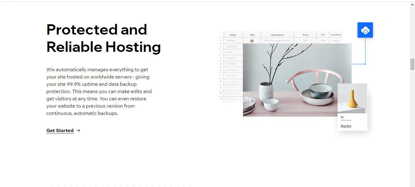 wix protected hosting